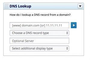 DNS Lookup